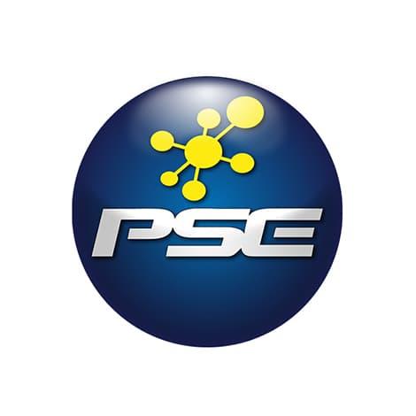 Pagos de Facturas y Anticipos en PSE
